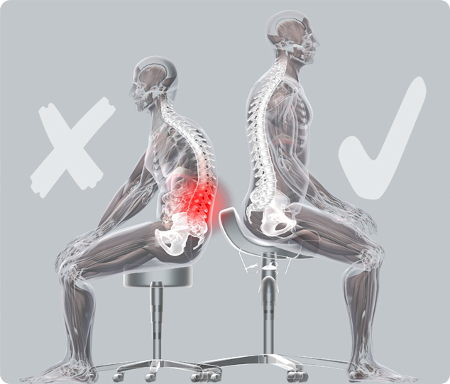 Bambach Saddle Seat Spinal Posture